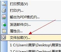 WPS 文档如何加密