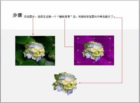 如何使用 ppt 给图片快速抠图
