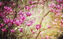 春暖上新季 3月值得入手的几款显示器