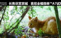 长焦赏京城 全画幅微单™索尼A7试用