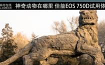 神奇动物在哪里 佳能EOS 750D试用体验