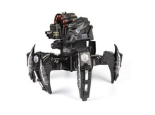 蜘蛛造型装甲机器人 似乎也是逗猫神器?
