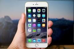 网购iphone收核桃 一千元买了一个核桃 网购如何避坑