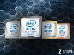 十年之战:EPYC对决 Xeon Scalable鹿死谁手?