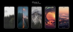 苹果iPhone X被扒了个一干二净 A11无线充电