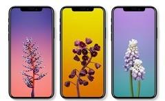 iPhone X/8/Plus内存曝光 2GB起步 3GB封顶