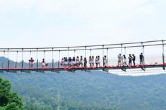 玻璃天桥惊现大Bug!在桥下竟能拍到女游客裙底