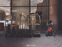 马思纯坐轮椅现身金马奖 上届获奖 今年成颁奖嘉宾