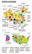 曝王思聪投资版图 除了是国民老公 更是低调的商人