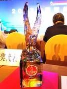 手机界的奥斯卡 vivo X20获年度最佳拍照手机奖