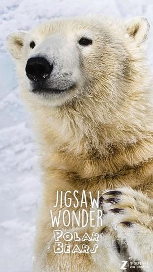 APP今日免费:熊孩子欢乐多 北极熊拼图