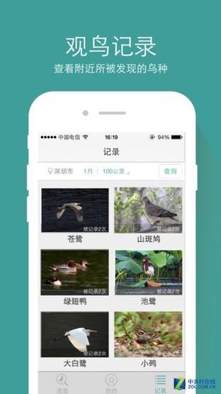 App今日免费:观鸟好帮手 中国野鸟速查