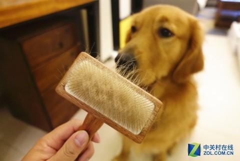 宠物毛发去无踪 莱克无线宠物吸尘器魔洁M95评测