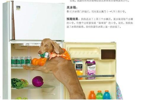 松下研发概念冰箱 能在房间里走来走去给你送饮料