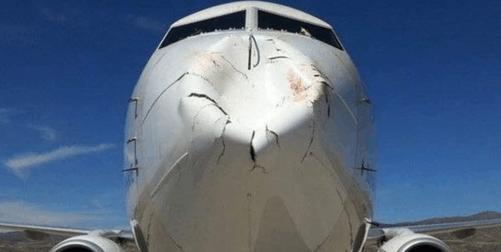小鸟撞飞机有多严重?超出你想象的伤