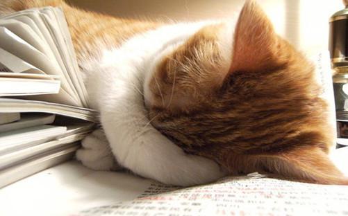 下午犯困怎么办?6种方法教你扫除困意-中关村在线