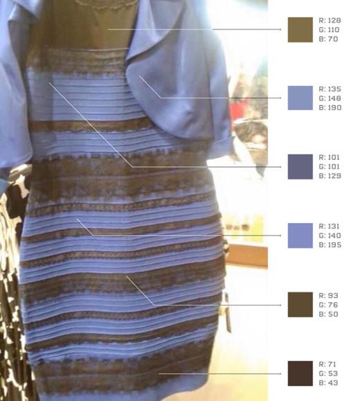设计裙子图片儿