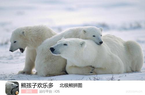 北极熊拼图-中关村在线