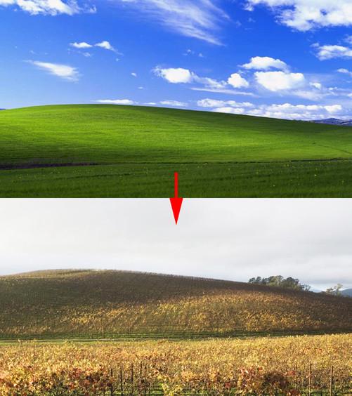 bliss的名字来自这个地方连绵起伏的绿色小山丘,蓝天,层状和卷状的