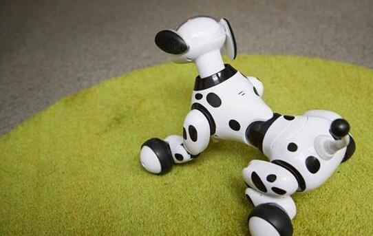 不是一条普通的狗 zoomer机器人宠物狗