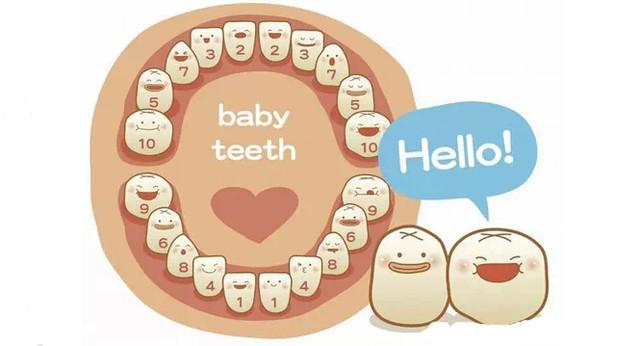 宝宝牙龈发白_宝宝牙龈发白图片|怀孕两个月左右,牙龈肿但不痛,怎么办?对宝宝 ...