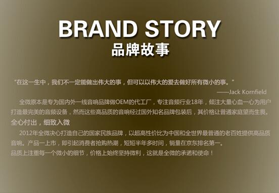 全微,京东销量第一的音响品牌