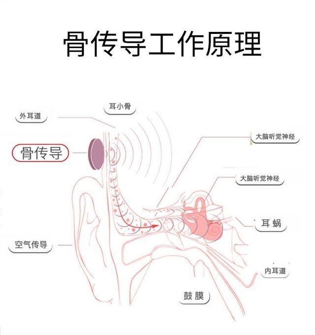 深圳IT�W�蟮�:耳�C怎么挑:�P于耳�C�@十大���} 你一定要看