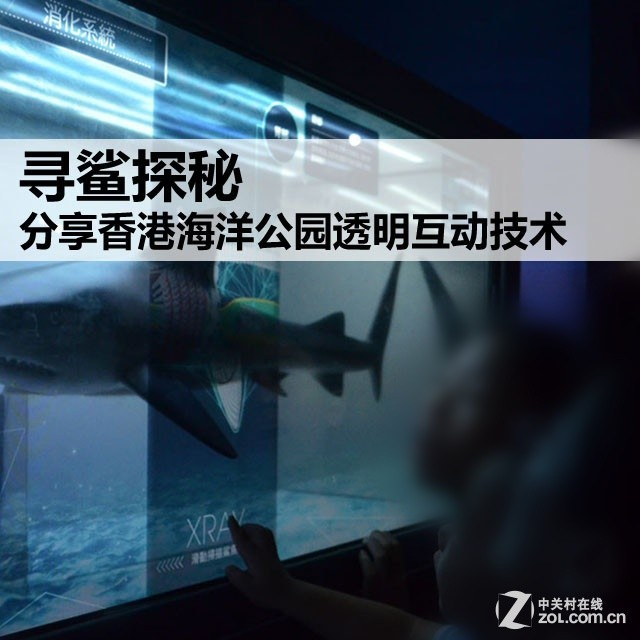寻鲨探秘 观香港海洋公园透明互动技术