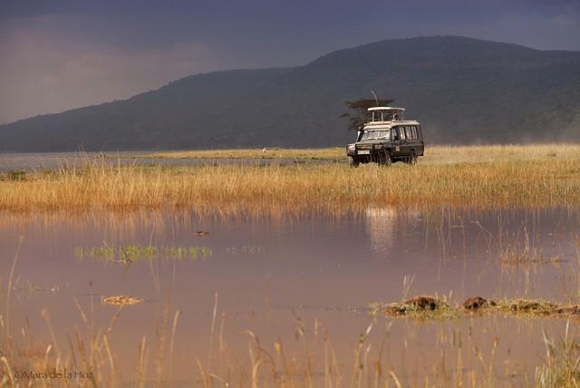 无论是美丽的风景还是众多野生动物,亦或是独具特色的非洲风土人情.