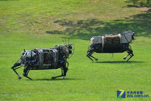专家预测:谷歌正在开发智能机器人系统