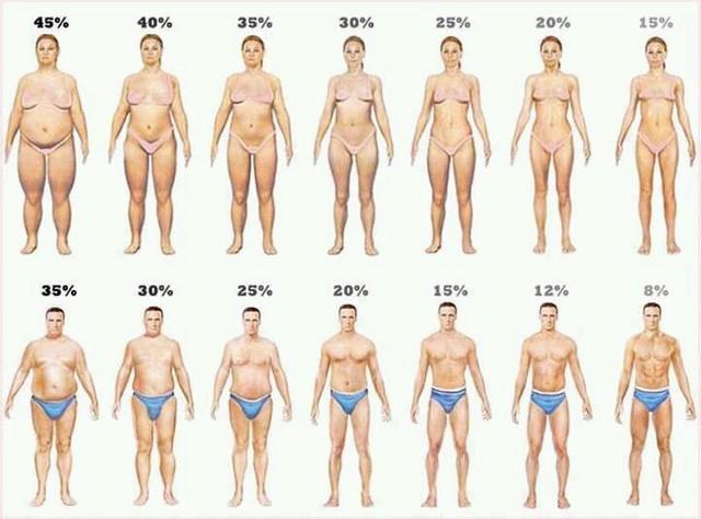 看外国专家告诉您 一分钟了解体重秤BMI