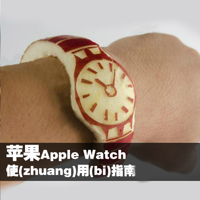 苹果Apple Watch使(zhuang)用(bi)指南