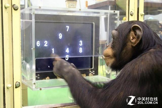 游戏难度鄙视链:简单模式都是手残猴子