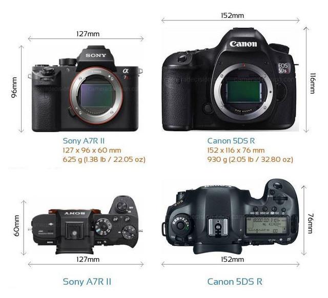 摄影新手解答 到底买单反还是买微单?