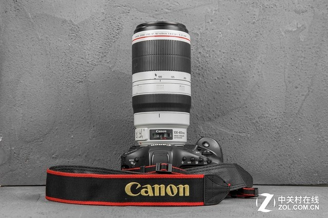 定格瞬间!佳能100-400mm镜头挑战远摄