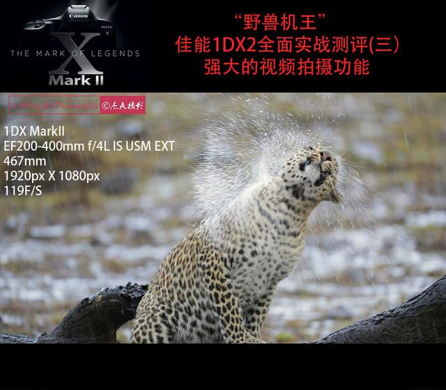 野兽机王—佳能1DX2全面实战测评(三)