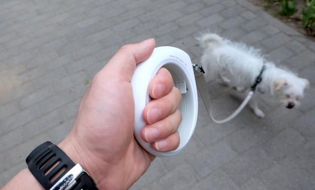 狗狗出门的智能设备 小佩智能牵引绳GO
