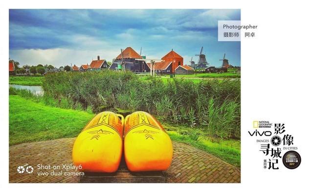 荷兰怎么玩!这四大景点你首先得去看看