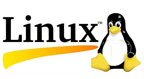桌面是Windows的 世界却是Linux的