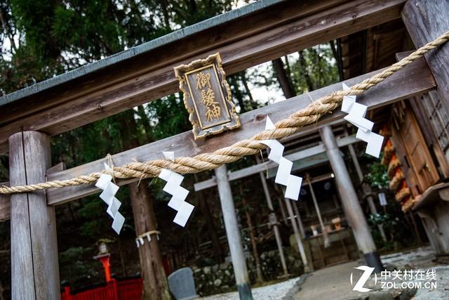 大C游世界 半日游日本京都的大美岚山