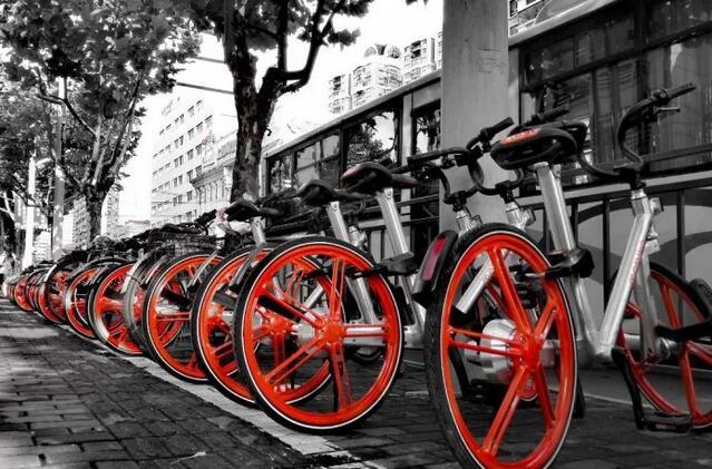 遗失率超75% 共享单车生命只有一个月