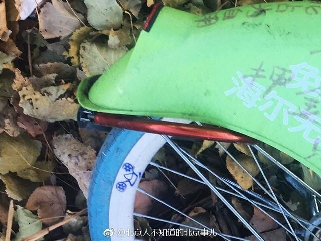 酷骑单车押金难退 用户加私锁占为已用