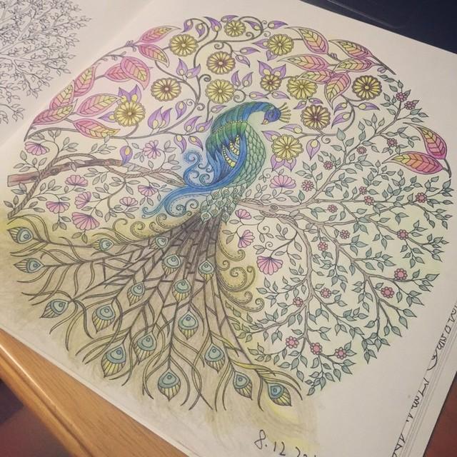 """《秘密花园》 这才是正确的涂色""""姿势"""""""