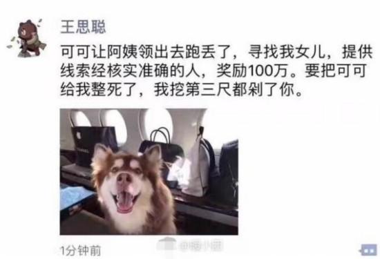 王思聪 100万给我 保证你家狗不会再丢