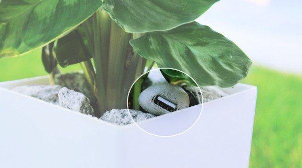 植物都可发电 Bioo Lite 盆栽充电器