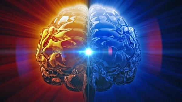 人类大脑有多大容量?竟还不如古董硬盘!