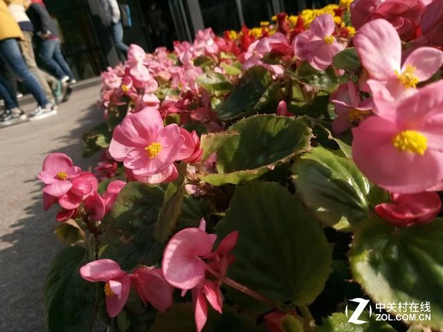 华为畅享6评测:前方4100mAh