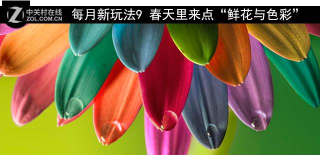 """每月新玩法9 春天里来点""""鲜花与色彩"""""""