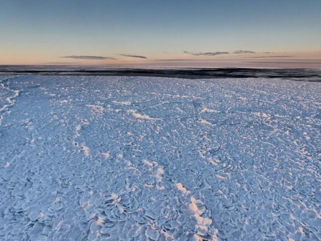 """神秘 科学家在南极发现罕见""""龙鳞""""雪地"""