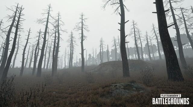 绝地求生雾天效果图 神秘寂寥酷似寂静岭